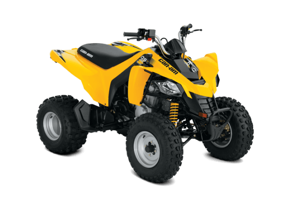 Can-Am DS 250 (2017 м.г.)