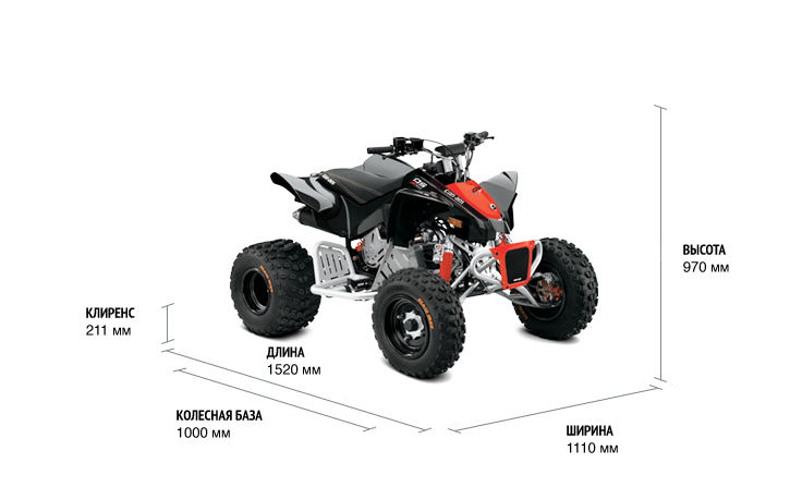 Can-Am DS X 90 2021