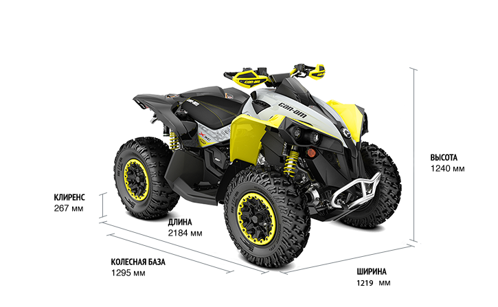 Can-Am Renegade 650 X XC (2019 м.г.)