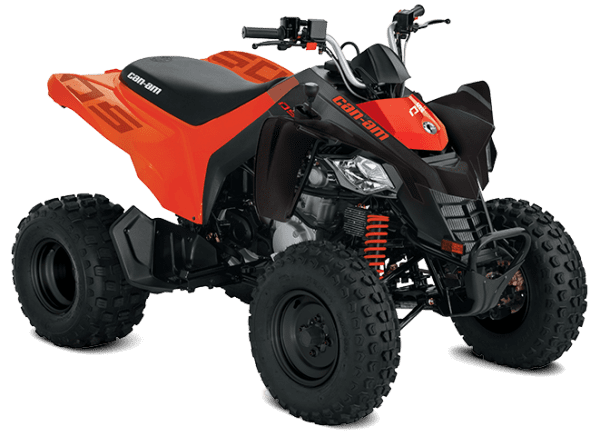 Can-Am DS 250 (2020 м.г.)