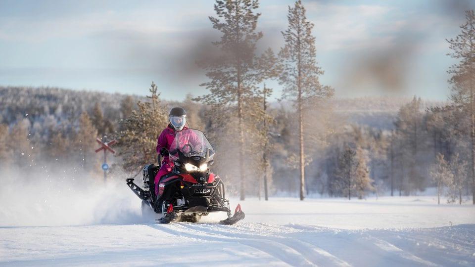 Обзор недорогих снегоходов BRP