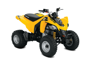 BRP Can-Am DS 250 (2017 м.г.)