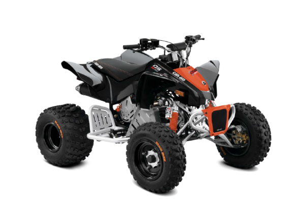 BRP Can-Am DS 90 X (2017 м.г.)